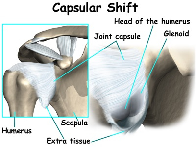 capsule of the shoulder